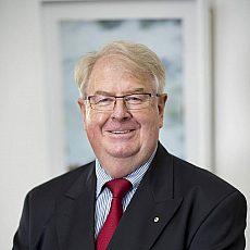 Distinguished Professor Alan Hayes